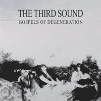 Gospels Of Degeneration