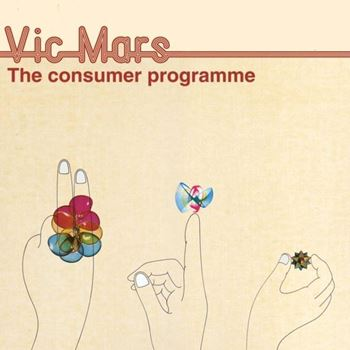 The Consumer Programme