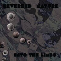 Into The Limbo