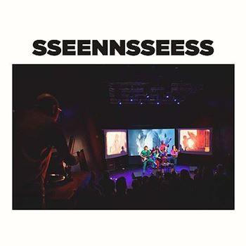 SSEENNSSEESS