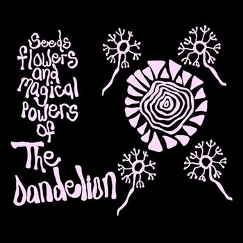 Seeds Flowers And Magical Powers Of The Dandelion