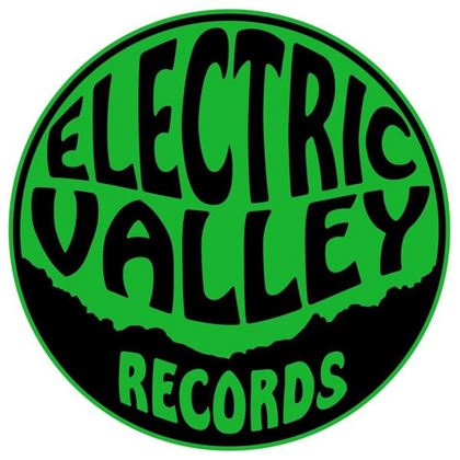 Picture for artist Electric Valley Records