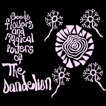 Seeds, Flowers And Magical Powers Of The Dandelion