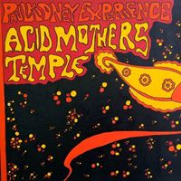 Paul Kidney Experience / Acid Mothers Temple