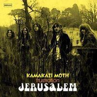 Kamakazi Moth / Frustration